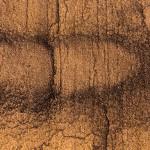 Braun-Gelb Dekor für Mineralit Steinliegen