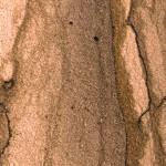 Braun - Dekor für Mineralit Steinliegen
